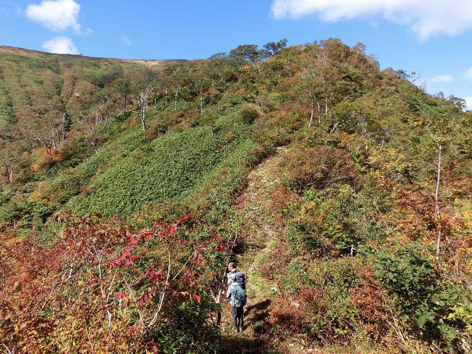 稜線はすっかり秋の気配