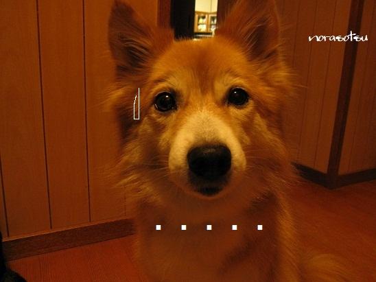 003_20111024205703.jpg