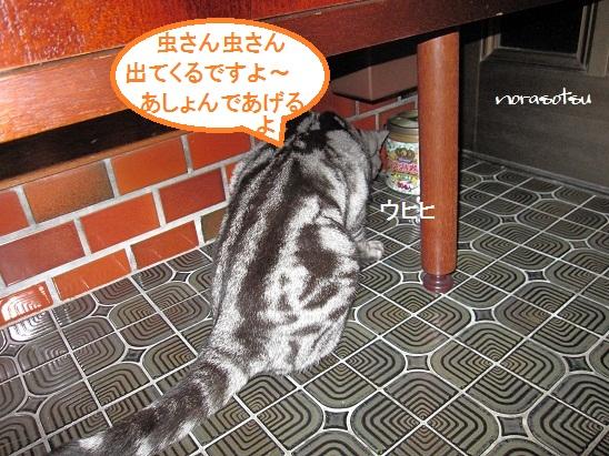 004_20111024205702.jpg