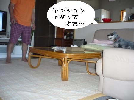 20100718.jpg