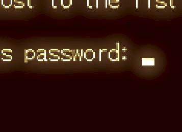 s29s20パスワード