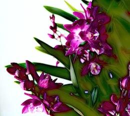20130618224133a4b.jpg