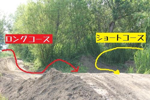 IMG_6724tori.jpg
