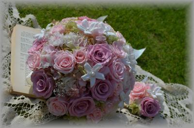 DSC_0069_convert_20120926221623.jpg
