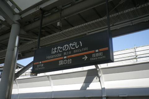 IMGP2583.jpg