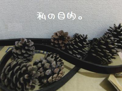 sCIMG4973.jpg