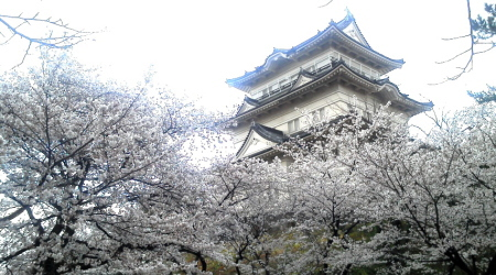 20110414-2.jpg