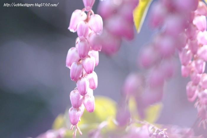 2011_03_20_06.jpg
