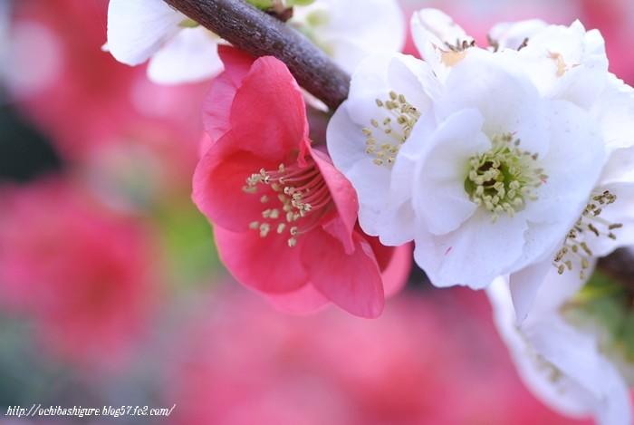 2011_04_16_03.jpg