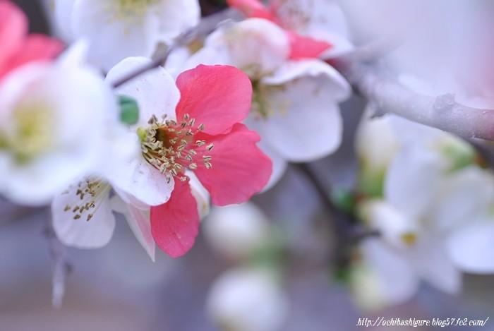2011_04_16_04.jpg