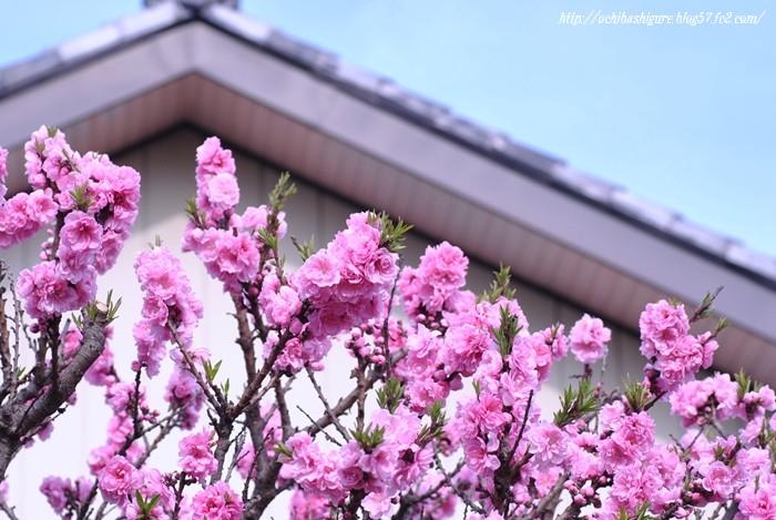 2011_04_23_01.jpg