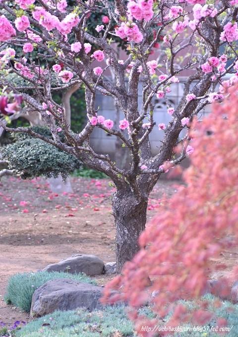 2011_04_23_02.jpg