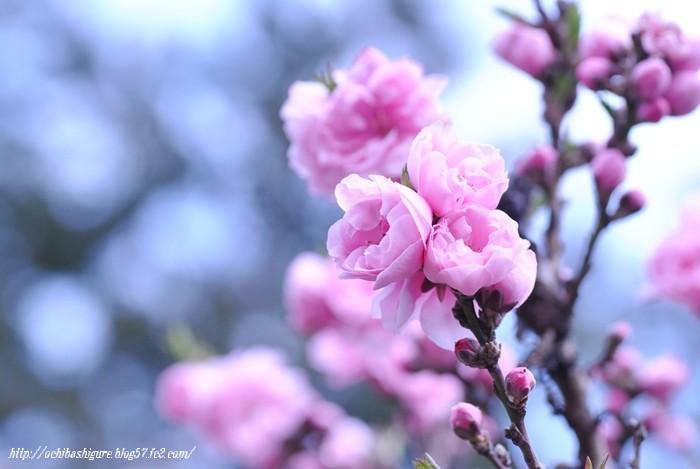 2011_04_23_03.jpg