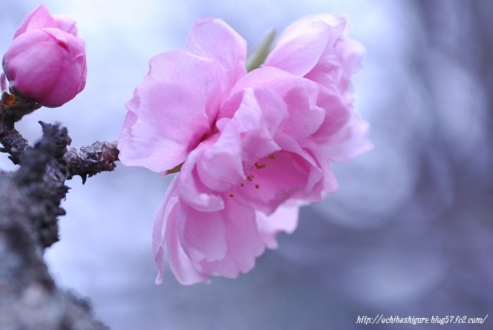 2011_04_23_04.jpg