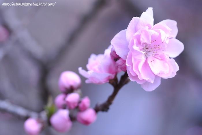 2011_04_23_06.jpg