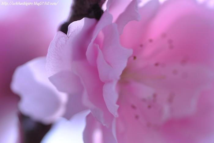 2011_05_05_2.jpg