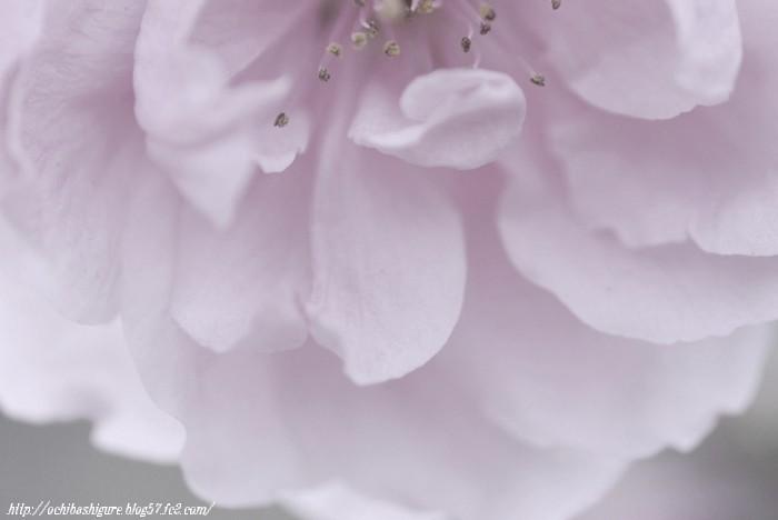 2011_05_05_6.jpg