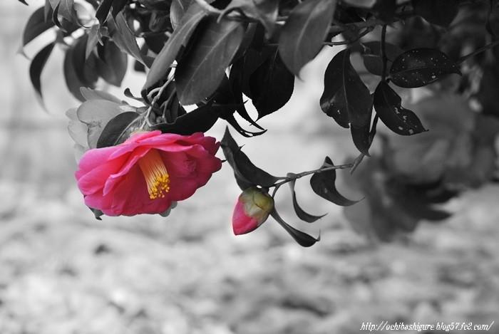 2011_05_07_2.jpg