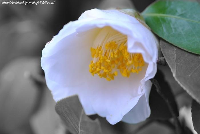 2011_05_07_3.jpg