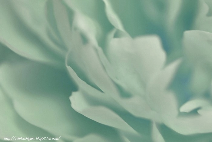 2011_06_12_04.jpg