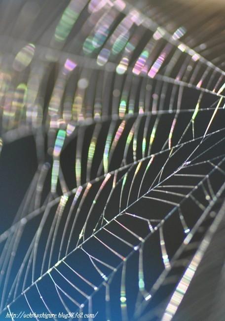 2011_07_23_02.jpg