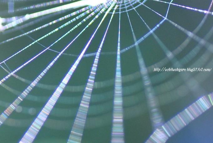 2011_10_09_04.jpg