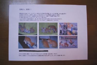 9_4_1.jpg