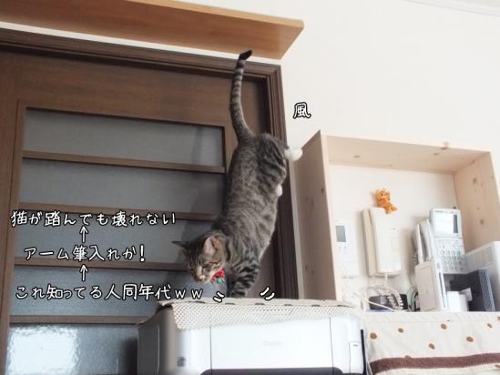 3_20130206231048.jpg