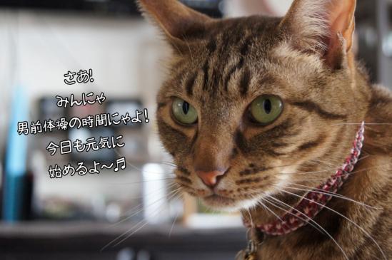 8_20130326095046.jpg