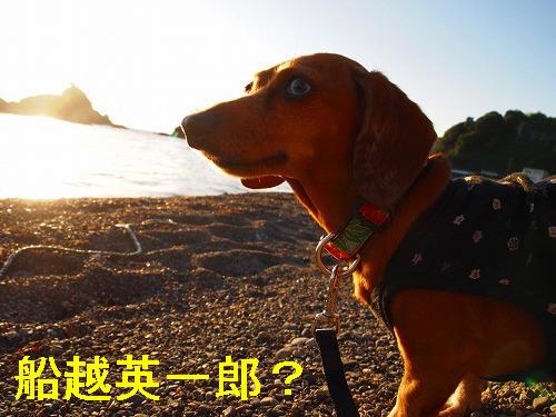 日本海が似合う♪