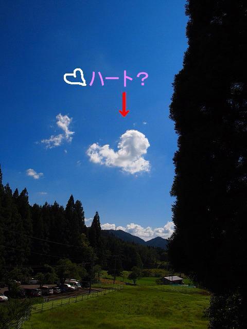 LOVE_20110719204940.jpg