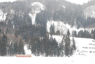 冬山の中、小雪舞う中
