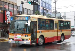 DSC_3556.jpg