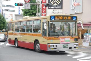 DSC_6532.jpg