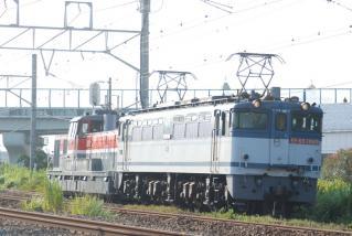 DSC_8298.jpg