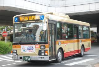 DSC_8877.jpg