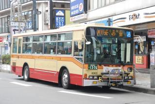 DSC_9273.jpg