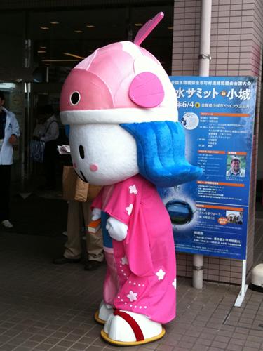 100604_koi-1-500.jpg