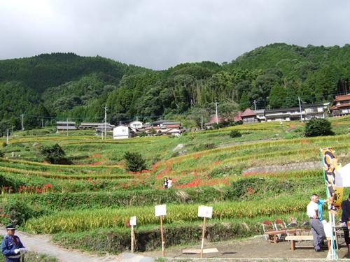 100923_higanbana03.jpg