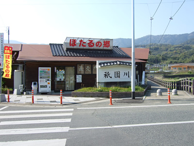 110421_hotaru01.jpg