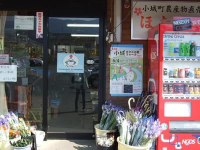 110421_hotaru02.jpg