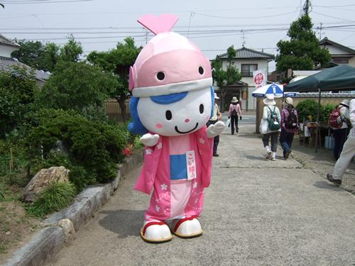 110604_hotaru02.jpg