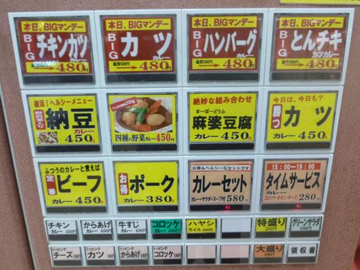 東京駅八重洲地下街カレーショップアルプス009