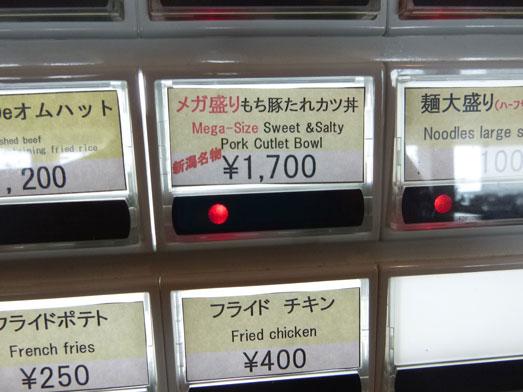 苗場プリンスホテルレストランアゼリアメガ盛りメニュー009