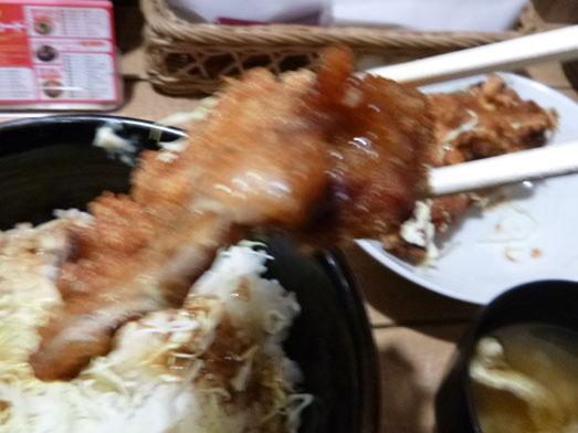 情熱のすためしどんどん秋葉原タルタル唐揚丼大盛り020