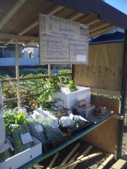 青空野菜市場