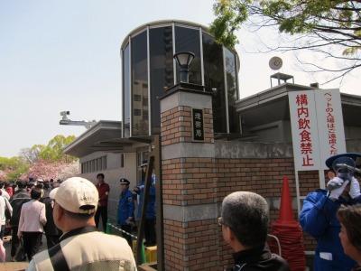 造幣局桜通り抜け (3)