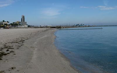 beachcc1301.jpg