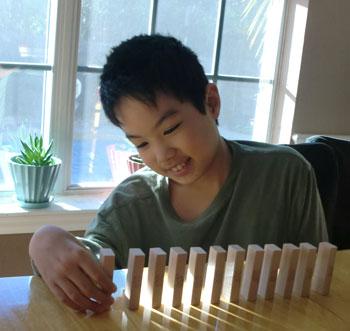 domino1301.jpg