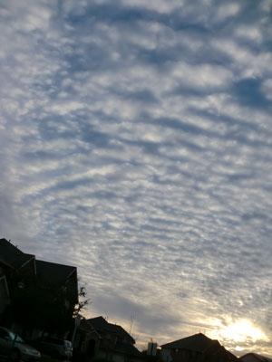 sky02271301.jpg
